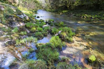 River in Galicia (Spain)