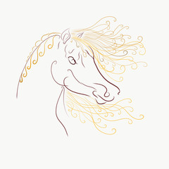 The horse's head with a fluffy mane and bright painted graceful lines with swirls