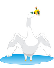 Swan goes fishing