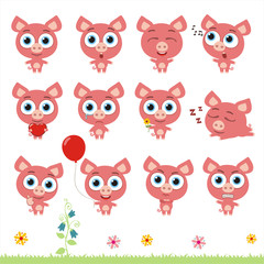 Big set cute little pig. Collection isolated cartoon pig in different poses.