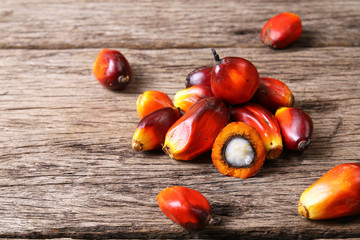 Oil palm seeds on wooden surface