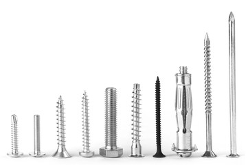 Screws stand in line on white background.