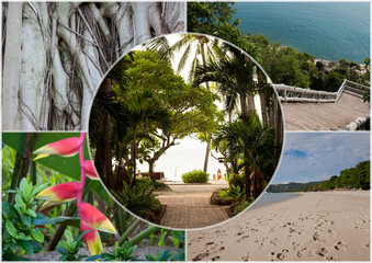 Beach on the tropical island. Thailand. Flowers. Collage