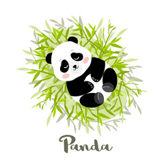 Young Panda lies on bamboo leaves, vector illustration