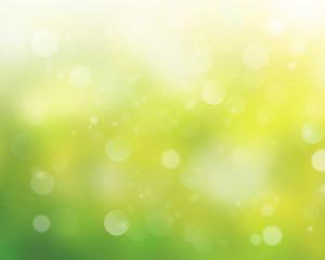 Colorful  backgound blur.Green wallpaper.