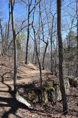 Hiking Trail in Tishomingo State Park Mississippi