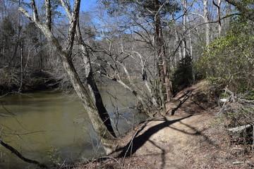Hiking trail along Bear Creek in Tishomingo State Park Mississippi