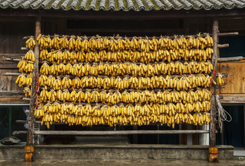 Drying corn cobs, Tiger Leaping Gorge, Yunnan, China