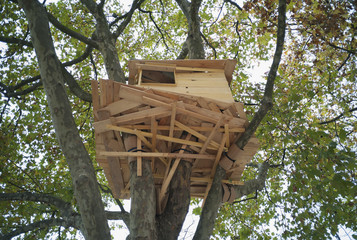 View of a tree house high above the ground, Tuileries Gardens, Paris, France