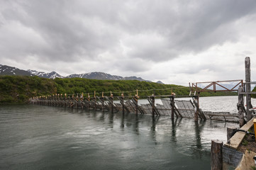 Chignik weir is a state operated counting weir for Sockeye and other salmon, Southwest Alaska