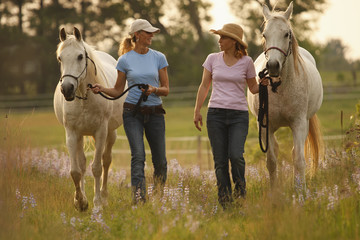 Two Women Leading Horses In Lupine Field