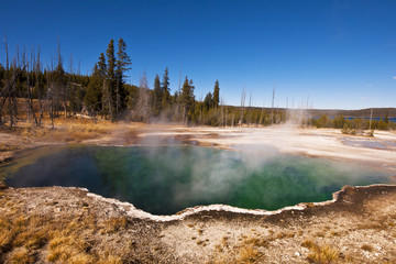 Hot springs in Yellowstone National Park; Wyoming, United States of America