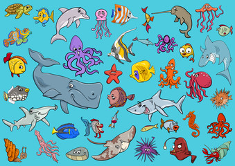 sea life animals cartoon set