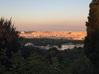 Vista di Roma al tramonto, Italia