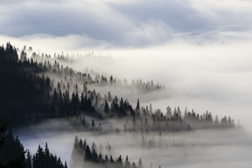 Poster Morning with fog Above clouds
