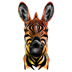 head of Zebra, vector color drawing black yellow and red
