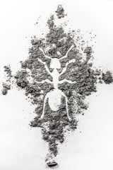 The ant, termite drawing silhouette made in dust, dirt, ash as pest control, exterminator, insect, insecticide, colony problem concept background