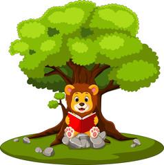 illustration of cartoon lion reading book