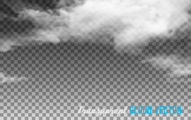 Transparent clouds. Vector.