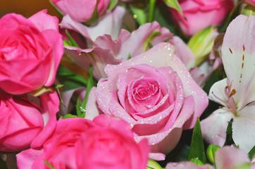 バラ_赤とピンク