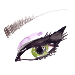 Beautiful woman's eye and an eyebrow painted in watercolor on clean white background