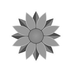 Flower icon. Sunflower vector illustration