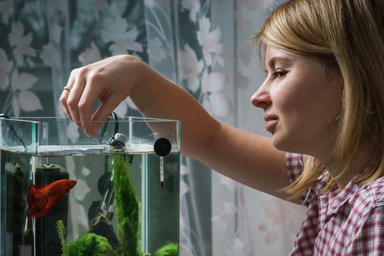 Young woman feeding beta fish in aquarium at home.