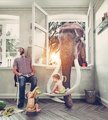 The elephant and the boys.  Photo combination concept