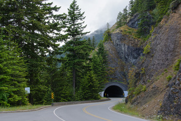 Tunnel in the Olympic national park in Washington State