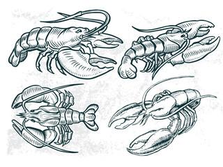 sea food element