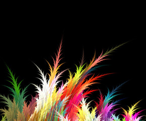 Colorful abstract grass on a black background. Fractal