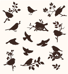 Vector set of spring bird and twig silhouettes, flying birds and on the nest.