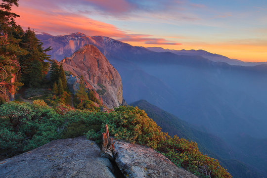 Quiet Morning in Sequoia Kings Canyon with Negative Space