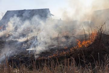 dry grass on fire