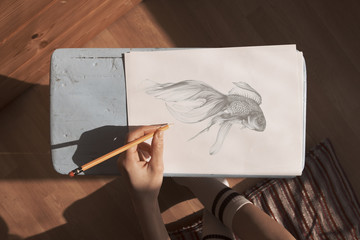 above view of a a pencil sketch of a fish being drawn