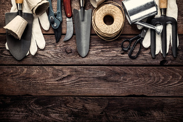 gardening tools on dark wooden background with space for text top view