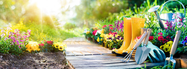 Gardening - Set Of Tools For Gardener And Flowerpots In Sunny Garden