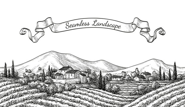 Vineyard seamless landscape.