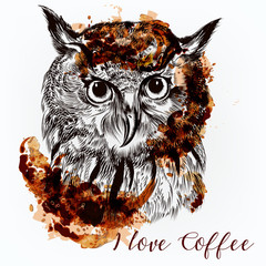 Hand drawn vector owl. Coffee illustration with a bird