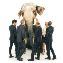 Elephant in the room out of place, individuality or wisdom concept. Business men and women in a group with an out of place elephant. 3d rendering illustration