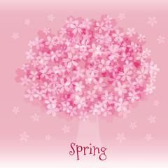 満開の桜の木 春のイメージ