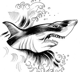 Shark in the wave. Ink drawing