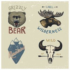 set of engraved vintage, hand drawn, old, labels or badges for camping, hiking, hunting with moose face, grizzly bear, mountain peaks and buffalo skull.