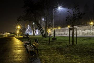 Parkbänke am Schleinufer an der Elbe in Magdeburg bei Nacht