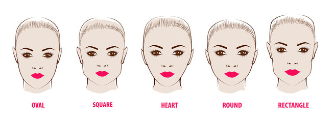 Forms of a female face.