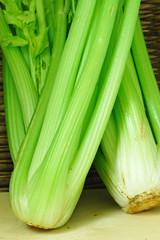 Fresh Celery Twigs