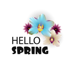 Hello Spring lettering nature flower backdrop