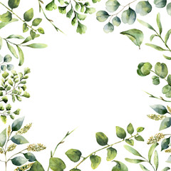 Watercolor floral frame. Hand painted plant card with eucalyptus, fern and spring greenery branches isolated on white background. Print for design or background.