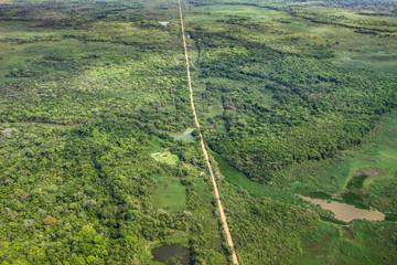 Aerial view of transpantaneira, Pantanal wetlands, Pantanal, Brazil