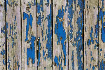 shelled fence blue color